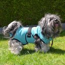 Chillcoat Hundebademantel by SuperFurDogs Aqua Green 3XS...